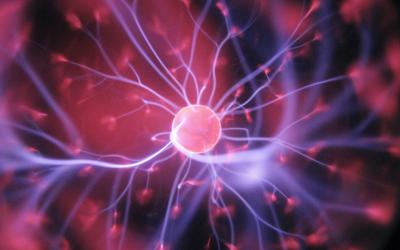 Neuropsicologia: storia di una scienza